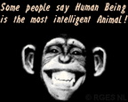 Chimp-IQ-RGES