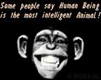 Chimp-IQ-RGES