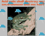Tree-Frog-1a-Acid-Rain-RGES